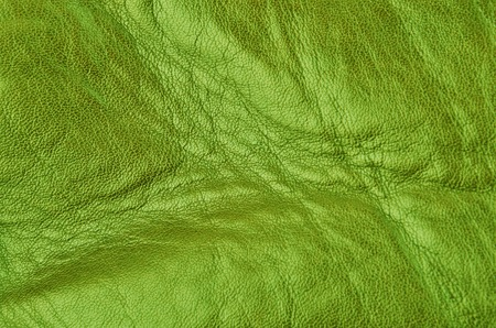 Close up of natural green leather background