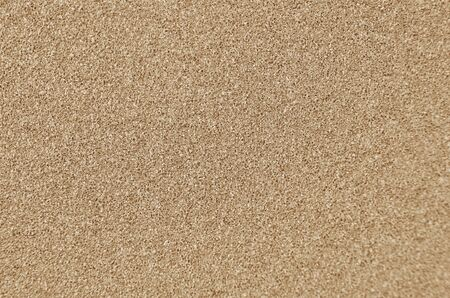 Abstract textured sandpaper, close up as background 写真素材
