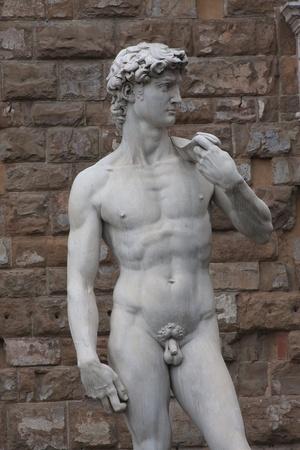 michelangelo: Michelangelos David statue in Piazza della Signoria, Florence, Italy