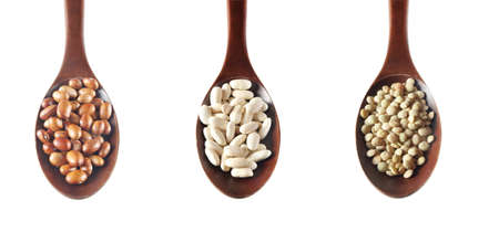 green lentil: Pinto beans, green lentil and cannellini beans on white background