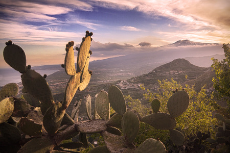 taormina: Sicily, Italy: Mount Etna seen from Taormina. Prickly pear on foreground