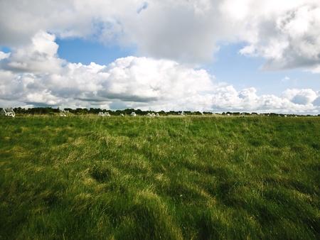 wide bretonian landscape in spring  photo