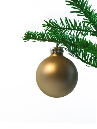 golden christmas ball hanging on a branch Stock Photo - 10930558