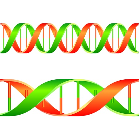 ilustración de una cadena de ADN aisladas sobre fondo blanco