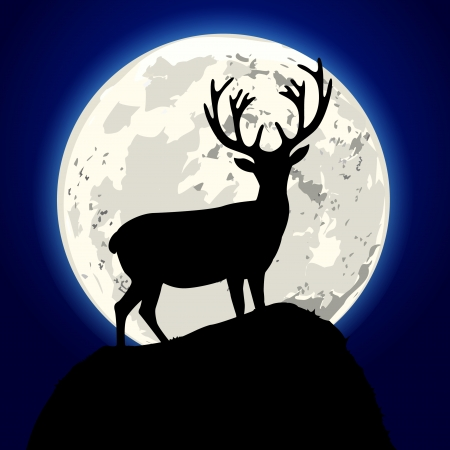 wild venison: detailed illustration of a stag in front of the moon, eps10 vector