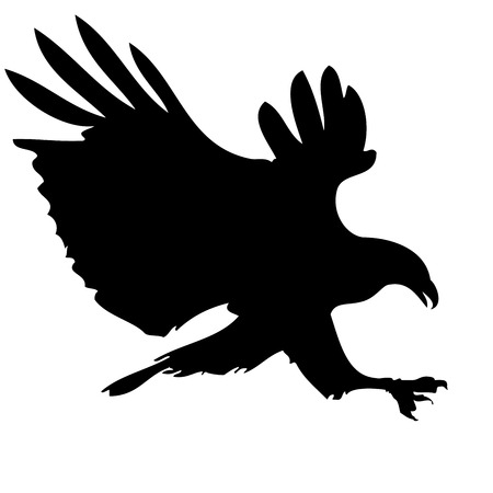 detailed illustration of a hunting eagle silhouette Vector