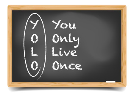 explanation: detailed illustration of a blackboard with YOLO term explanation