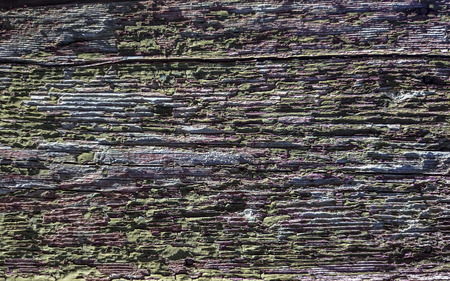 weathered: old weathered wood texture Stock Photo