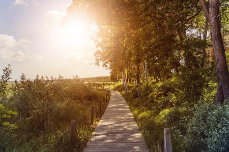 sun beach: wooden boardwalk over dunes at the beach in the sun Stock Photo