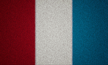 grassy field: flag of france with grass texture, sport concept