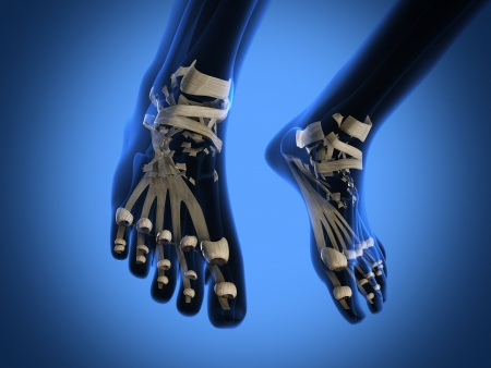 human radiography scan of legs Stock Photo - 18481156