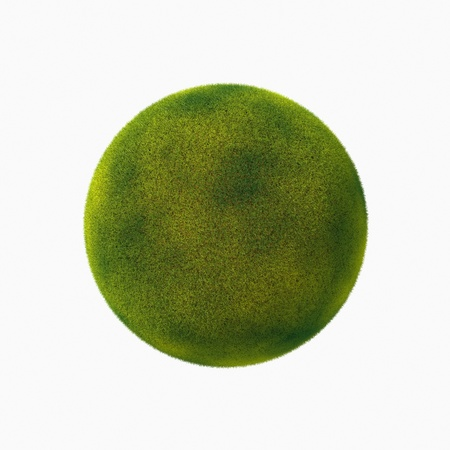 Grass sphere isolated on a white background  photo