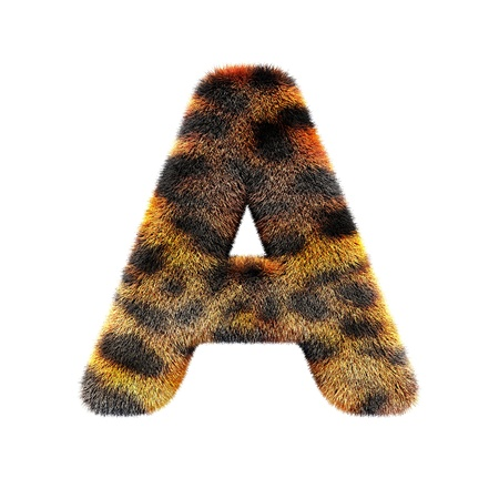 text basedon leopard skin, isolated in white