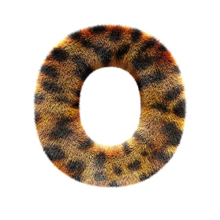 text basedon leopard skin, isolated in white photo