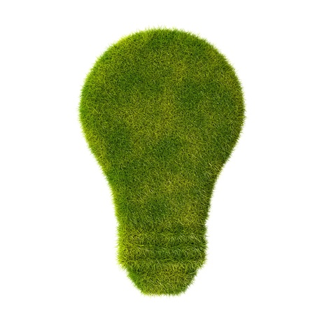 Grass light bulb icon photo