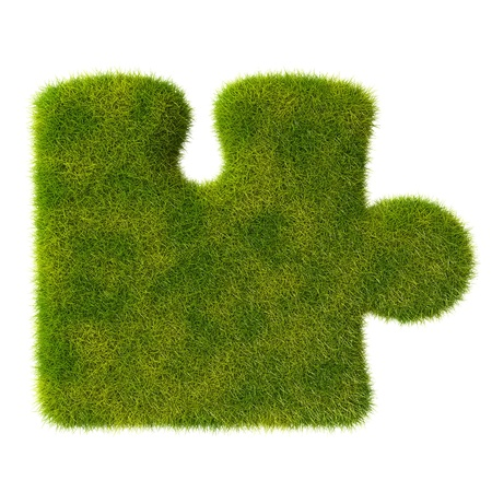Grass single puzzle icon photo