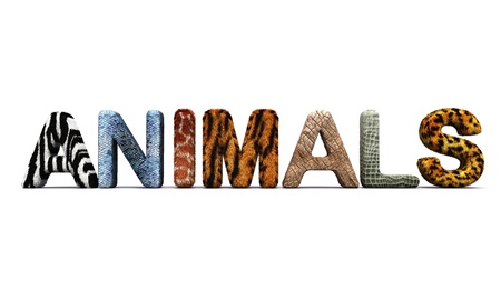 Word ANIMALS with fur letters Stock Photo - 19259245