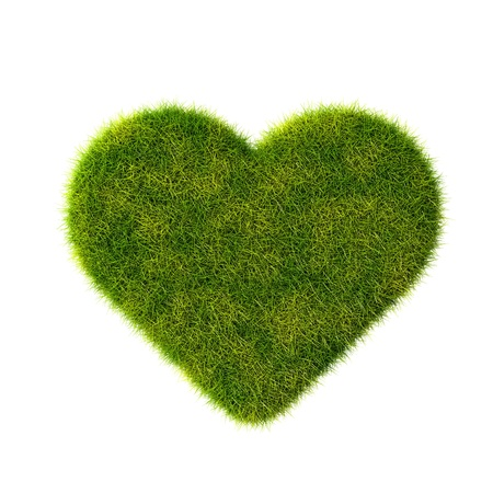 Green grass heart  Isolated on white  photo