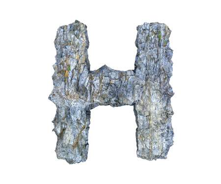 high quality 3d render of stone letter photo