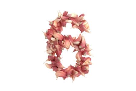 lobule: Garlic symbol on white background, high quality 3d render