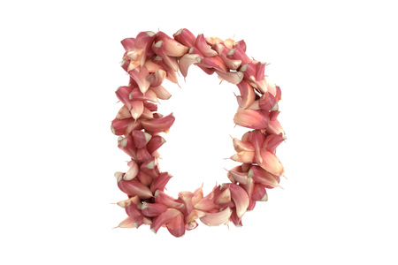 흰색 배경에 마늘 편지, 높은 품질의 3d 렌더링