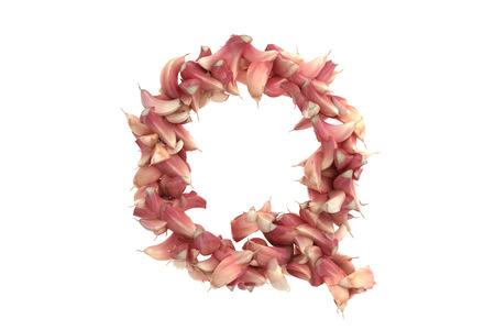 lobule: Garlic letter on white background, high quality 3d render
