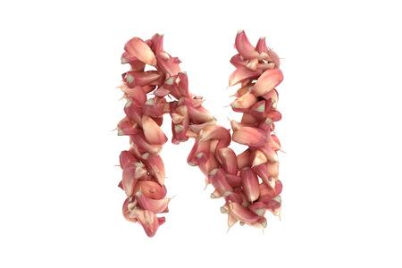 Garlic letter on white background, high quality 3d render