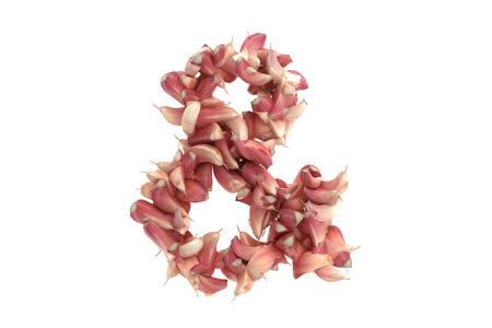Garlic symbol on white background, high quality 3d render