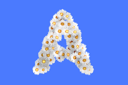 camomiles macro: Camomile flower letter, high quality 3d render
