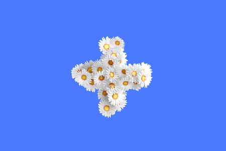 camomiles macro: Camomile flower symbol, high quality 3d render Stock Photo