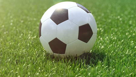 mondial: soccer ball in the grass field. 3d rendering Stock Photo