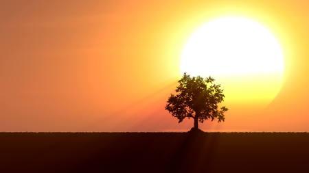 time lapse: Growing tree at sunrise 3d illustration
