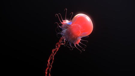 Jellyfish underwater going to the sun isolated on black 3d illustration Stock Photo