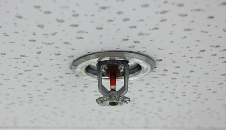 Fire Sprinkler installed in the building.