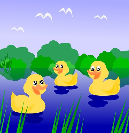 Three little ducklings swimming on the river. Stock Photo - 11381340