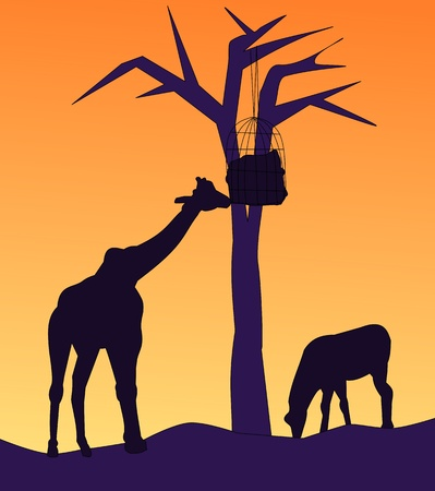 grassing: A giraffe is eating food hanging from a tree, and a horse is grassing nearby.  Stock Photo