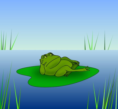 A grumpy frog lying on a water lily leaf. photo