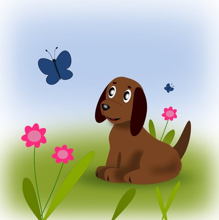watchdog: A little puppy looking at a butterfly.