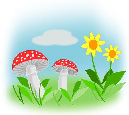 Yellow flowers and fly agaric against the blue sky and green grass.