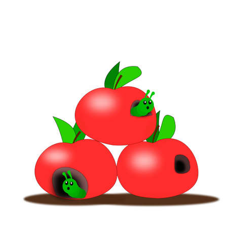 Three red apples with green worms peeking out of holes  photo