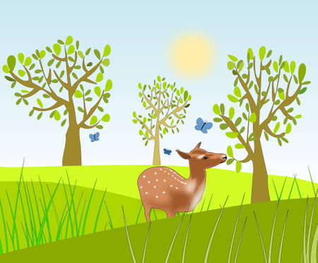 A deer standing and eating of a tree in a meadow  Stock Photo