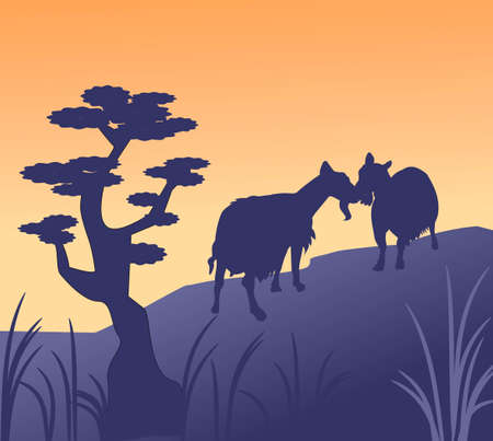 Two goats greeting each other on a hilltop  Stock Photo
