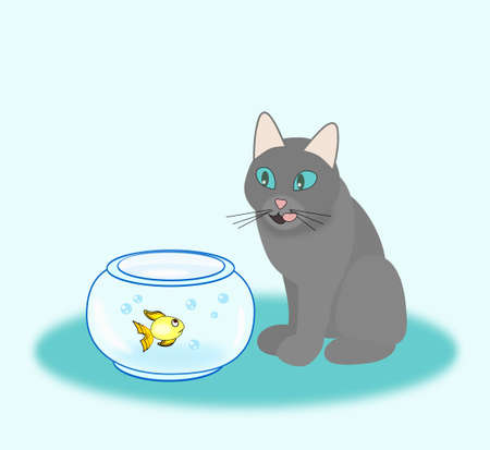 A hungry cat who sits and looks at a goldfish in a bowl  photo