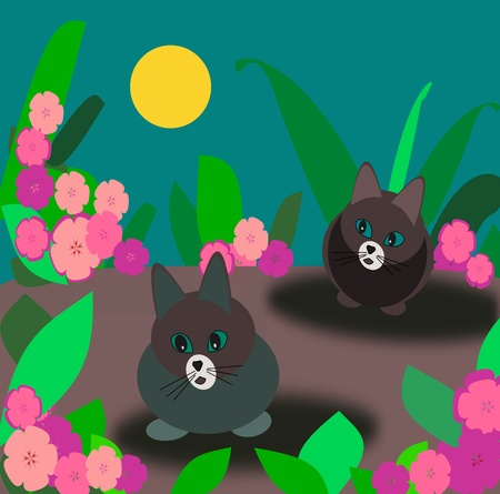 Two cats  hunt in the moonlit  photo