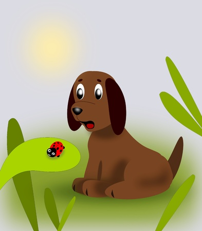 A little puppy looking at a ladybug Stock Photo - 12879066