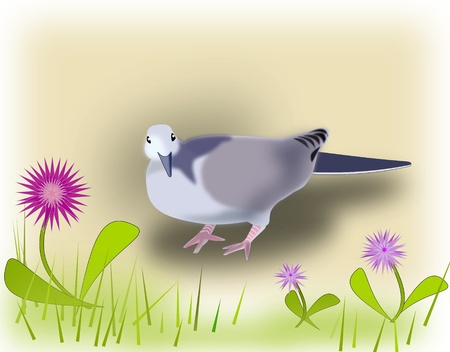 urbane: A pigeon and some fantasy flowers  Stock Photo
