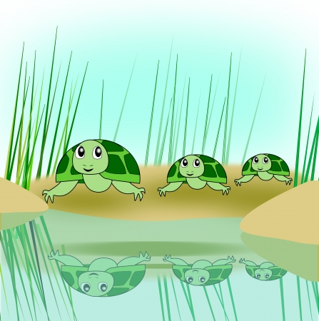 A turtle family on the way down to   a pond   photo