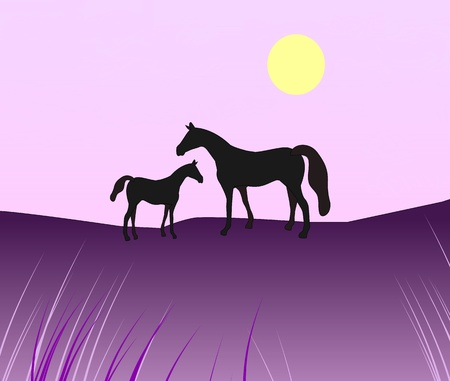 A simplistic picture of a horse with a foal at dusk.  photo