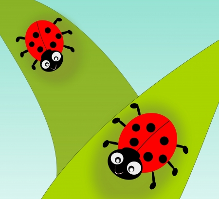 Two cute ladybugs on green leafs  photo