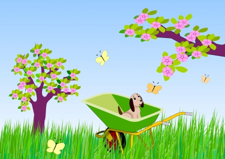 A garden with flowering trees and a   puppy sitting in a wheelbarrow    watching the butterflies. photo